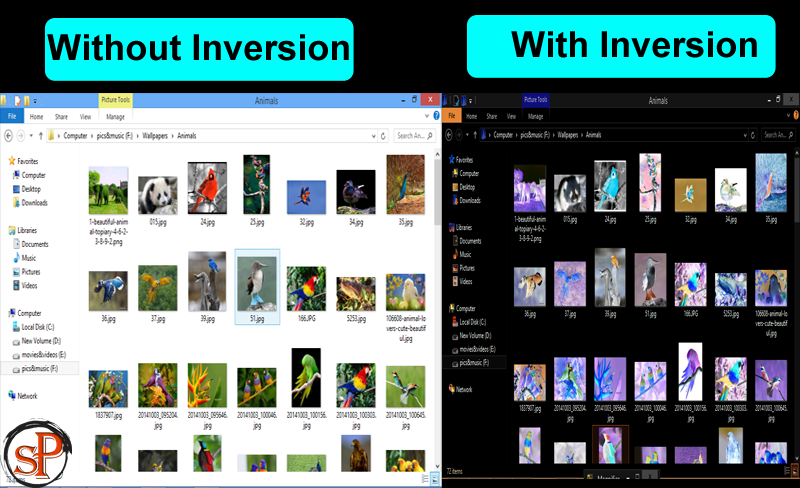 7+ Quick Methods To Invert Colors On Windows PC