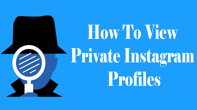 How To View Private Instagram Profiles [Private Instagram Viewer